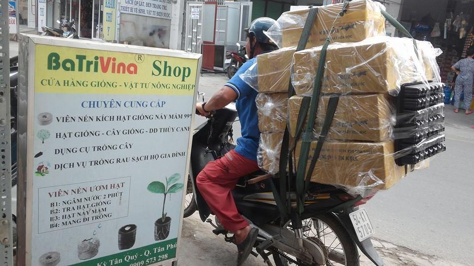 batrivina giao hàng viên nén ươm hạt