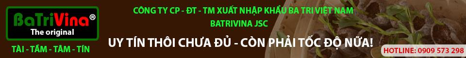 công ty cp xnk Ba tri việt nam