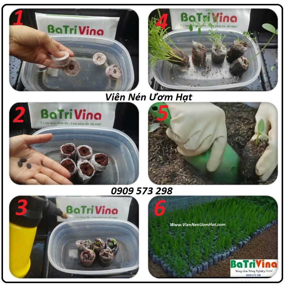 hướng dẫn sử dụng viên nén ươm hạt