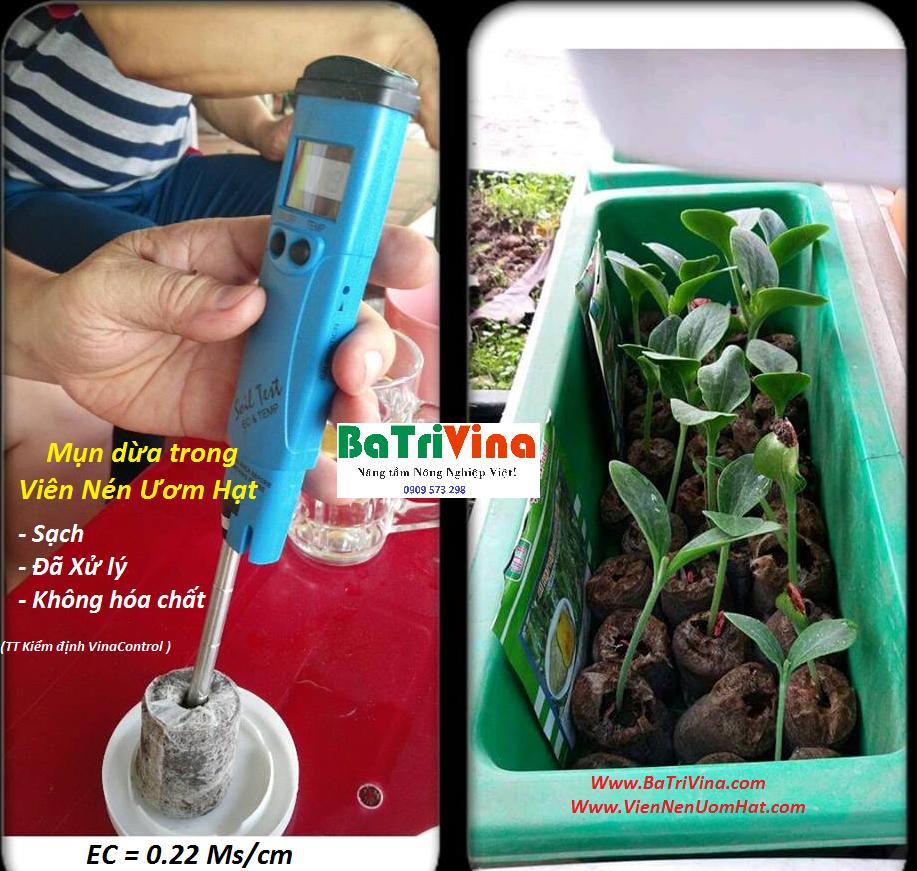 Ec trong nguyên liệu làm nên viên nén ươm hạt nói riên và trong Đất trồng trong khu vườn nhà bạn là gì? Tại sao nó lại quyết định lớn như vậy đến sự phát triển của cây trồng đến như vậy? Chúng ta cùng tìm hiểu qua bài viết dưới đây bạn nhé!